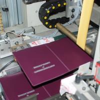 macchina stampaggio a caldo automatica5